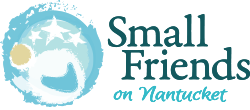 Small Friends on Nantucket